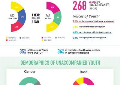 Unaccompanied Youth Factsheet